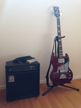 Sgbass_and_ampeg